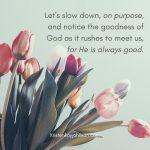 God's Goodness Pursues Us